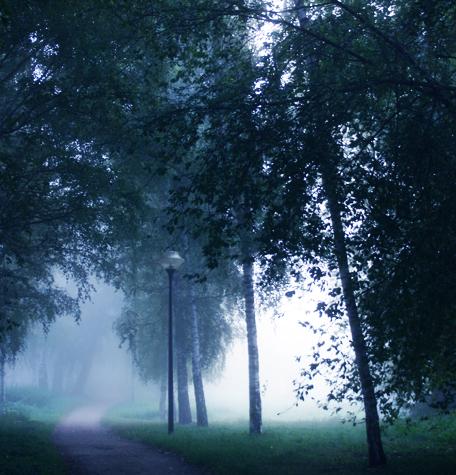 Neubrandenburg im Nebel